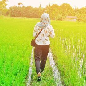 Zia Nasution