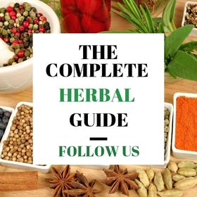 The Complete Herbal Guide/Natural Healing