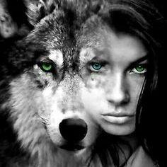 Wolfy Senpai
