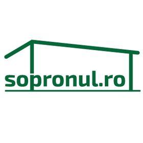 sopronul.ro