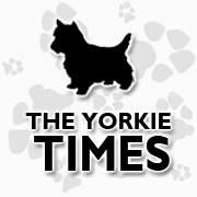 The Yorkie Times