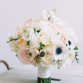 Kvety Helleborus Flowers