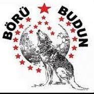 Türk Milleti Birligi