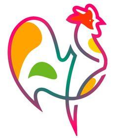 Raising Happy Chickens | Ideas for Backyard Beginners | Hatching