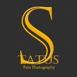 Status pets Photography