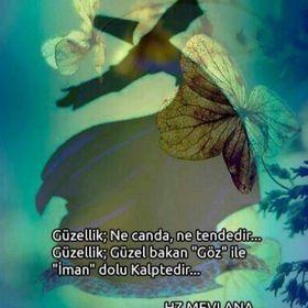 Dilek Akdere