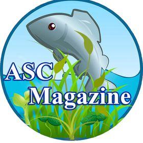 ASC Magazine Ideas