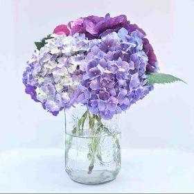 Fishlocks Flowers
