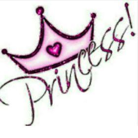 Princess 78623