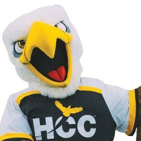 Hcc Southwest Hccsw2019 Profile Pinterest