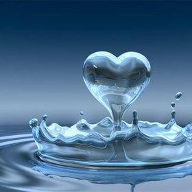 Renewed heart