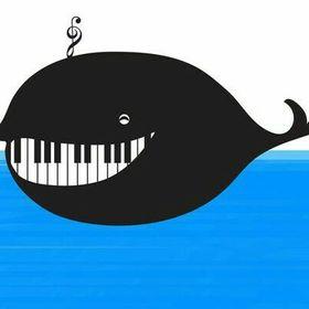 Glazbena pedagogija (Music pedagogy)