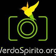 Verda Spirito