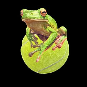 Pete Toad