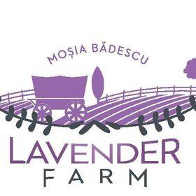 Mosia Badescu Lavender Farm