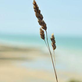 serenity's photographies