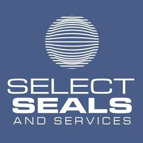 Mechanical Seals Consultants