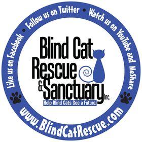 Blind Cat Rescue & Sanctuary Inc - official Page