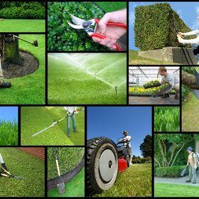 Exciotech Grounds Maintenance
