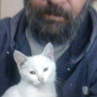 Murad Ilgicioglu
