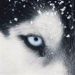 Rune Wolf