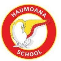 Haumoana School