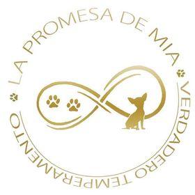 La promesa de Mia