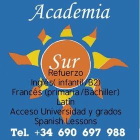 Academia Sur