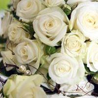 Kvety Naomi