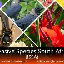 Invasive Species South Africa