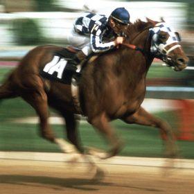 Horse racing betting videos de fantasmas bettingexpert naperville