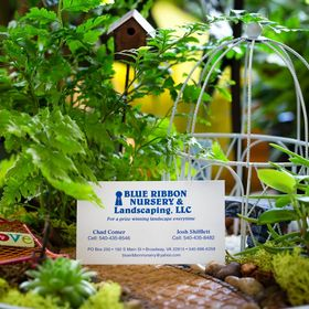Blue Ribbon Nursery & Landscaping.