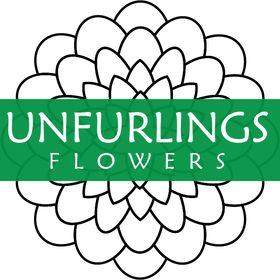 Unfurlings Flowers