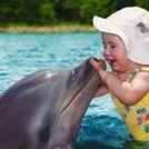 Monic Dolphin