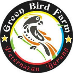 Green Bird Farm And Aviary