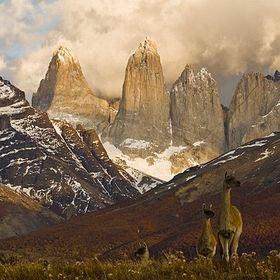 Terra Incognita Ecotours