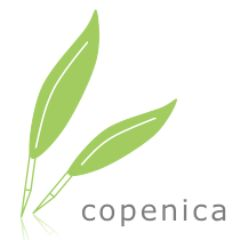 学生団体 コペニカ