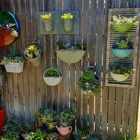 PicketFence Succulents