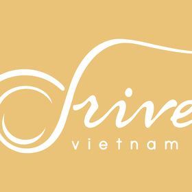 Drive Vietnam Airport Transfers & Private Tours