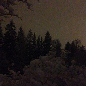 Murtel Snow