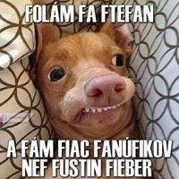 Ftefan Figo