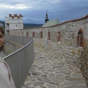 Monika Revilakova