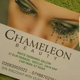 Chameleon Beauty Barbara
