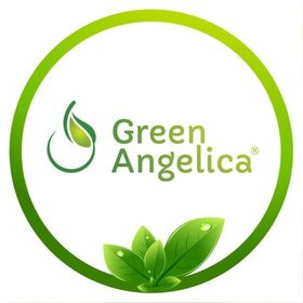 Green Angelica