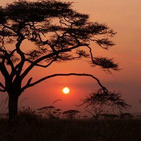 Grandiorizzonti - Viaggi in Africa