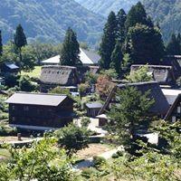 Sayuri Yukiyanagi