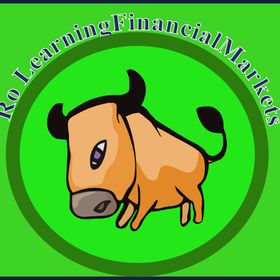 RoLearningFinancialMarkets