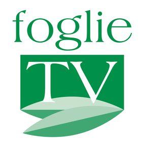 FOGLIE online