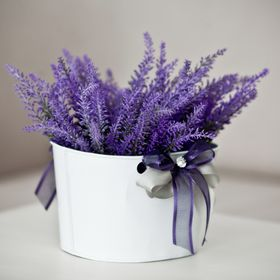 Lavender Hotel ****