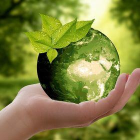 Tiszta Energiák Kft - Napelem